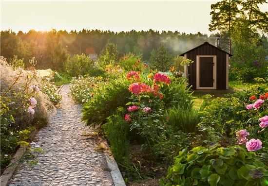 Mini Sauna Λετονίας εξωτερικού χώρου 2